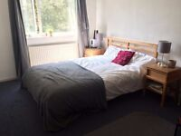 Large double room 5 min walk from Brixton Tube