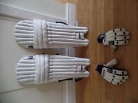 Fearnley Cricket Pads and Gloves