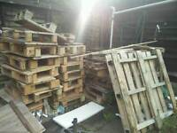 Pile of Pallets for free
