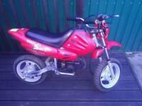 Kids 50cc motorbike pit bike scrambler