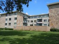 2-1/2 Efficiency Apartment in Pointe Claire