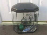 FISH TANK WITH HOOD LIGHT PUMP HEATER £20
