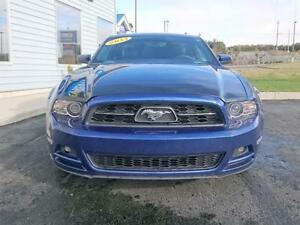 2013 Ford Mustang 2dr Cpe St. John's Newfoundland image 2