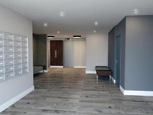 Large 2 Bedroom/1.5 Bath with A/C (One Month Free Rent) Kitchener / Waterloo Kitchener Area image 11
