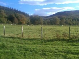 Land for Sale with out line planning permission for detached house at Braemore, near Ullapool