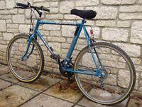 "Bicycle (22"" Raleigh Savanna Gents Mountain Bike)"