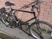Raleigh Mohawk Mountain Bike