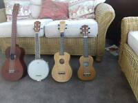 Collection of various ukes