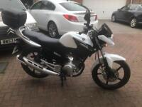 Yamaha YBR 125 64 plate (Sept 2014) Excellent condition, Very low mileage
