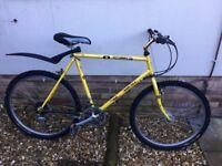 Muddy Fox Explorer 80s adult mountain bike