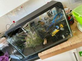 Fish tank with loads of extras