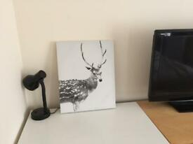 Dunelm Mill Stag Canvas