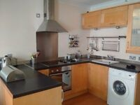 1 Bed Flat - Surgeons Hall- available 1st September