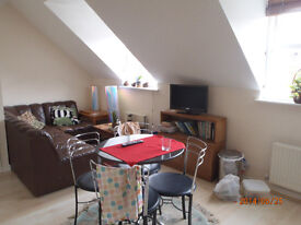 Furnished single room in quiet modern two bed flat with river views NR2 4GZ female wanted