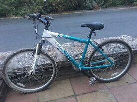 Twilight Apollo Adult Bike