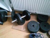 Gym wheights