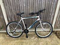 Mens Mountain bike Cheap ideal for students