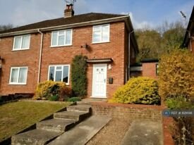 3 bedroom house in Micklefield Road, High Wycombe, HP13 (3 bed) (#821698)