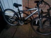 Radford Morgan adult mountain bike