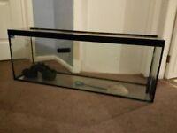 aquarium 4ft