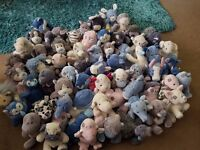 Large number of Blue Nose Friends