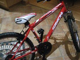 Boys New Bike