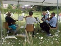 String quartet for weddings or functions - classical, pop, folk music