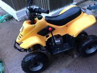 110cc thundercat quad