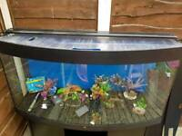Jewel vision 4ft 260l tank and accessories