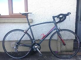 Avanti giro road bike