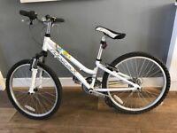 Ridgeback Destiny bike