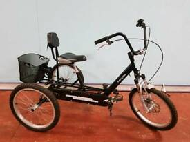 Theraplay Trekked Trike