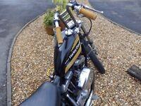 Harley Davidson Ironhead Sportster Chopper Bobber Classic Vintage 1000cc Custom