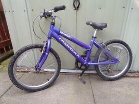Quality girls mountain bike for sale