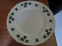 Colclough Ivy Leaf Dinner Plates x 10