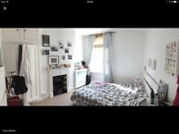 Lovely double in spacious, light flat to share