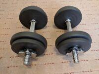 Dumbbell Weights 2 x 10kg Spinlock Cast Iron Body Sculpture