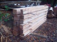 larch timber for sale
