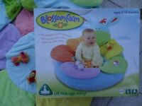 Early Learning Centre (ELC) Blossom Farm age 0-12 months. Sit me up cosy.
