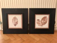 2x Leaf Print Picture Painting Pair with Frame (Made in Canada) - 52.5cm x 52.5cm