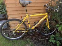 Overlord Yellow Mountain Bike