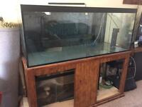 ND Aquatics fish tank