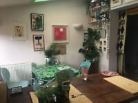 Double room in lovely house in bills ( full week or Monday to Friday)
