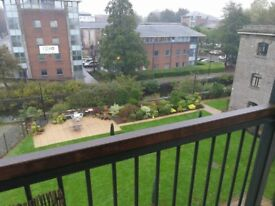 2 bedroom flat for rent in Cardiff bay, Lloyd George ave