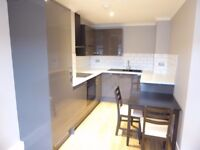 Refurbished Contemporary One Bedroom Apartment , SW17