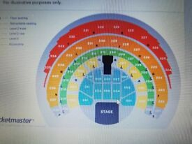 Shania Twain VIP PLATINUM Concert Tickets x 2, SSE HYDRO GLASGOW Second row from front!!