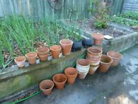 Clay pots of all sizes for sale in Sauchen
