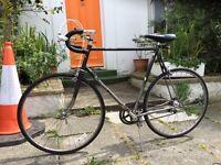 Vintage - Road Bicycle - Dawes Shadow