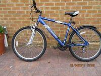 Mountain bike Raleigh Firefly