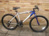 Dawes Shuniah bicycle